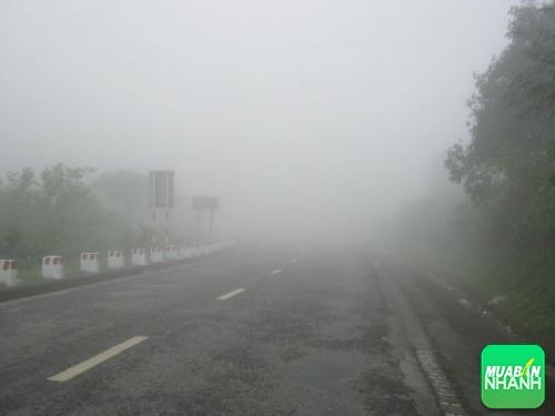 Lái xe ôtô an toàn - Kinh nghiệm hạ đèo lúc mù sương, 83, Minh Thiện, Mua Bán Xe Nhanh, 15/06/2016 17:29:04